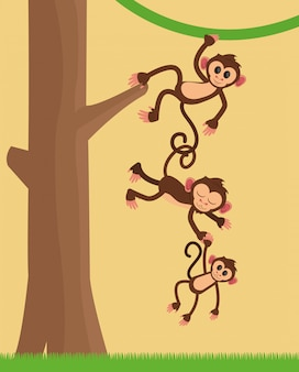 Dessin animé de singes jungle