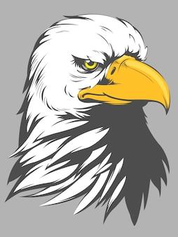 Dessin animé tête d'aigle à tête blanche
