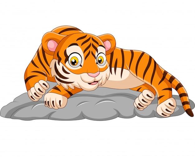 Dessin animé, tigre, poser, pierre