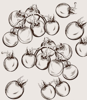 Dessin au trait tomates cerises. illustrations de la récolte d'automne