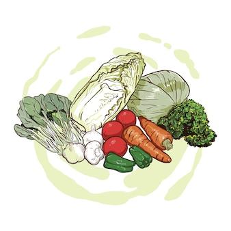 Dessin à la main chou, carottes, ail et feuilles de moutarde