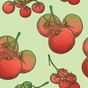 Dessin à la main croquis de tomates vectorielle continue