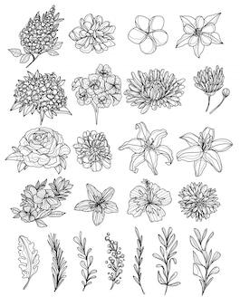 Dessin à la main de fleurs et croquis noir et blanc