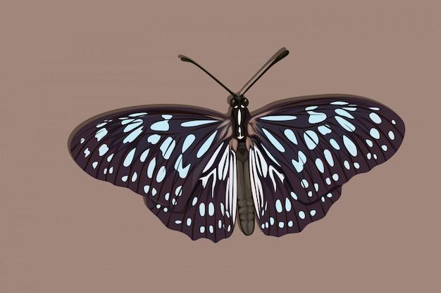 Dessin à la main papillon bleu