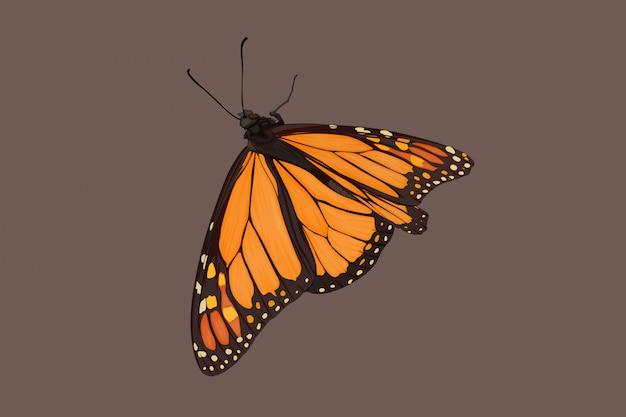 Dessin à la main de papillon