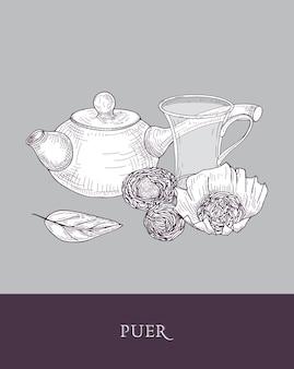 Dessin monochrome de théière à long manche, tasse en verre transparent et feuilles de thé puer sur gris