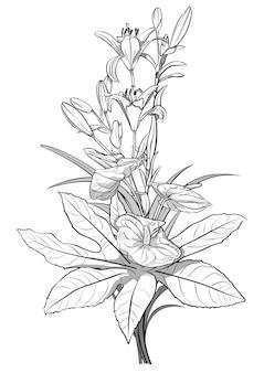 Dessin noir et blanc de fleurs de bouquet