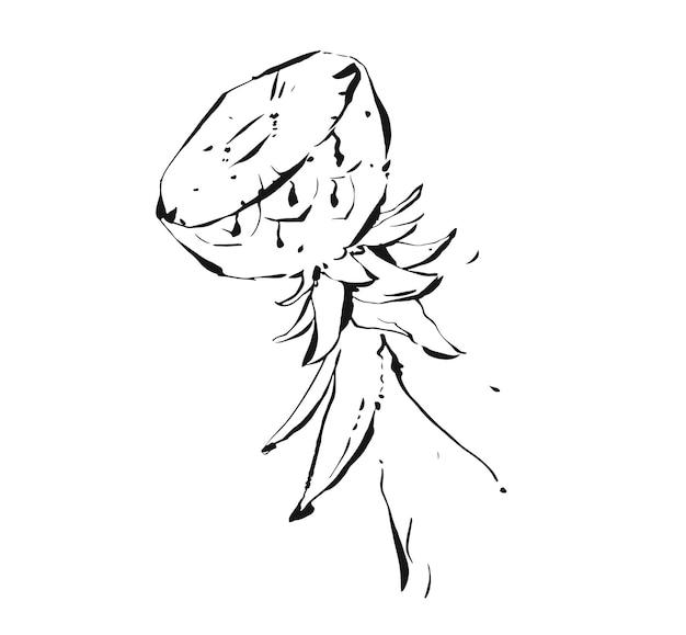Dessiné à la main abstrait encre tropicale exotique dessin graphique illustration d'ananas de fruits