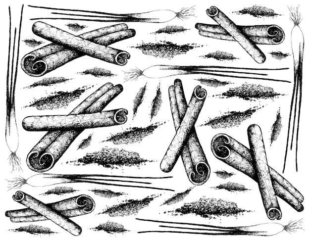 Dessiné à la main de bâtons de cannelle et d'oignon vert