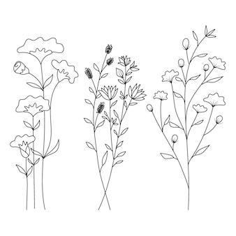 Dessiné de main de fleurs sauvages isolé sur fond blanc.