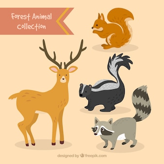Dessinés à la main animaux belle forestiers mis