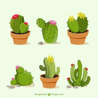 Dessinés à la main des dessins animés de cactus