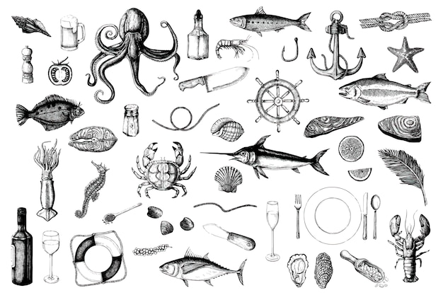 Dessinés à la main du concept de fruits de mer