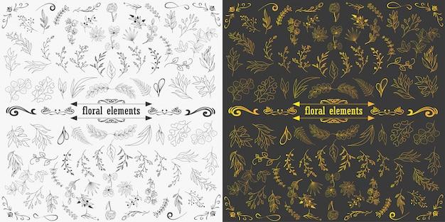Dessinés à la main des éléments floraux design vector