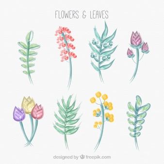 Dessinés à la main des feuilles et des fleurs admirable
