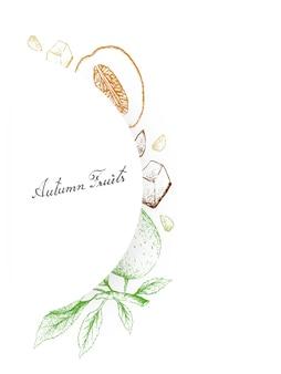 Dessinés à la main des fruits d'automne, des melons de miellat et des pommes