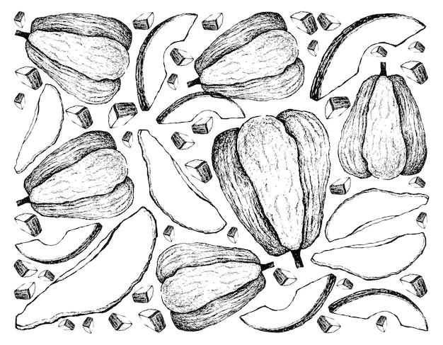 Dessinés à la main de fruits chayote sur fond blanc