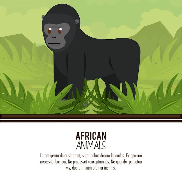 Dessins animés d'animaux africains