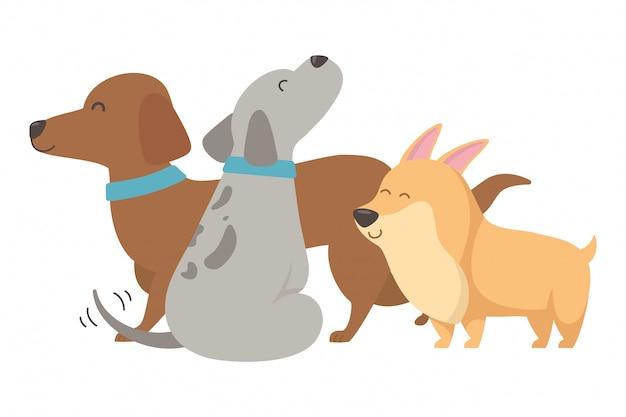 Dessins animés de chiens
