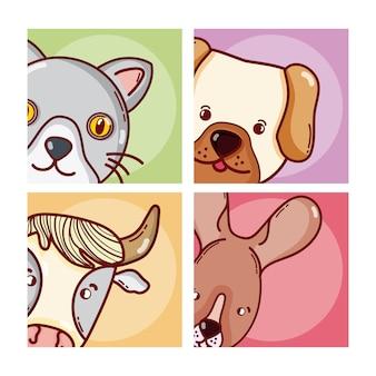 Dessins animés de mignons animaux sur des cadres carrés vector design graphique