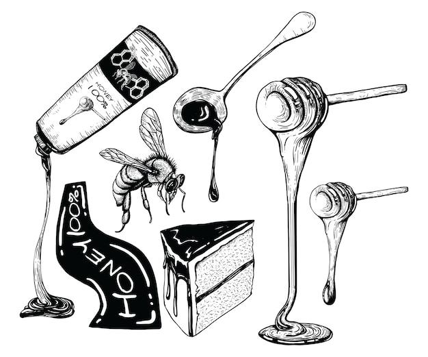Dessins au miel