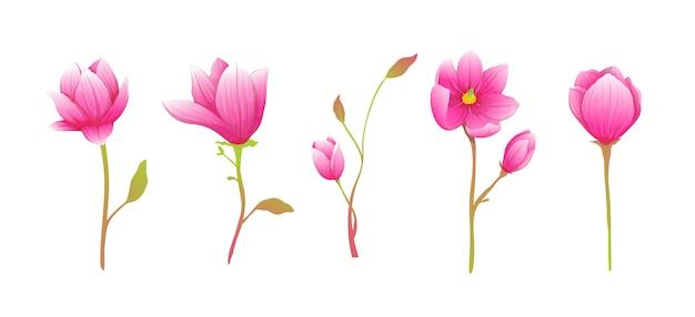 Dessins de fleurs classiques chics romantiques magnolia ou roses, collection de bouquet artistique élégant et doux.