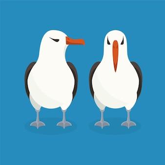 Deux albatros sont assis l'un à côté de l'autre.