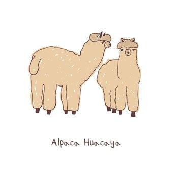 Deux alpagas. illustration vectorielle doodle dessinés à la main.