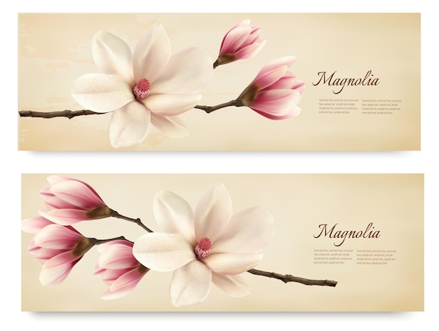 Deux belles bannières rétro de magnolia.