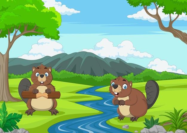 Deux castors mignons de bande dessinée dans la jungle