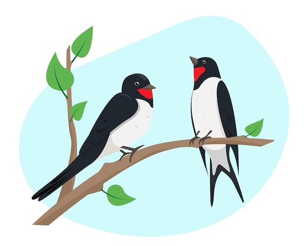Deux hirondelles assis sur une branche d'arbre