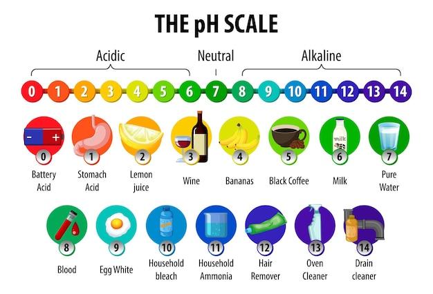 Le diagramme de l'échelle de ph sur fond blanc