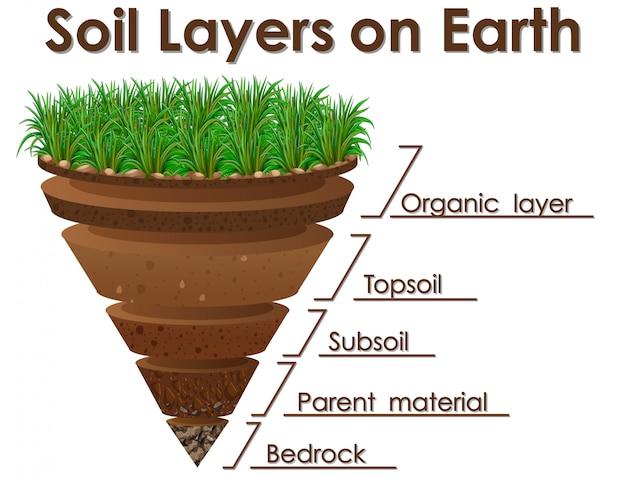 Diagramme montrant les couches de sol sur la terre