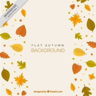 Différentes feuilles d'automne, fond