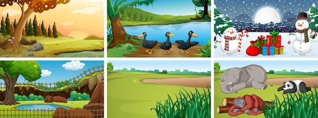 Différentes scènes avec des animaux dans le parc