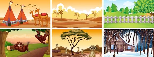 Différentes scènes avec des animaux et la nature