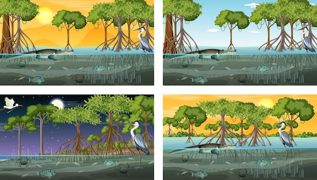 Différentes scènes de paysage de forêt de mangrove avec des animaux et des plantes
