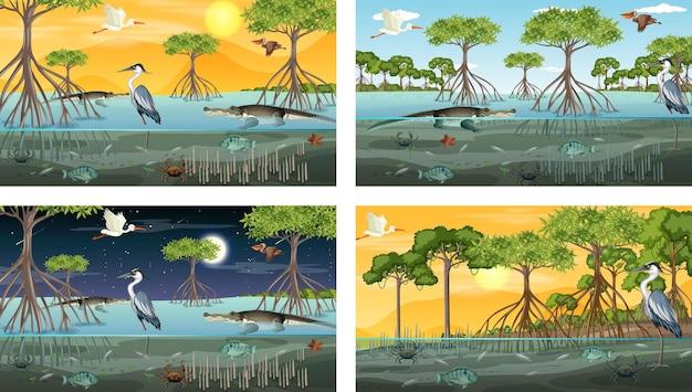 Différentes scènes de paysage de forêt de mangrove avec des animaux