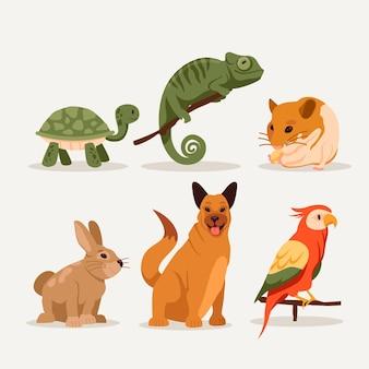 Différentes variétés d'animaux de compagnie