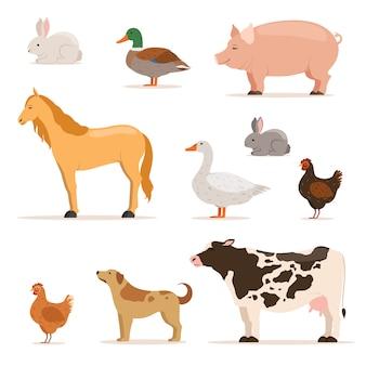 Différents animaux domestiques à la ferme