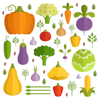 Différents légumes en style cartoon