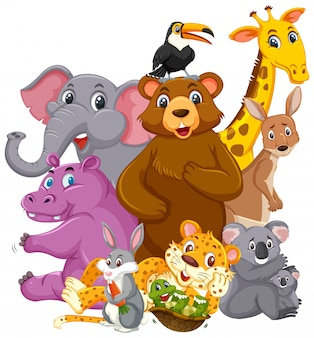 Différents types d'animaux sauvages isolés
