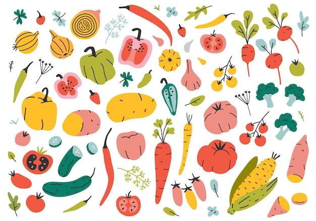 Différents types de légumes dessinés à la main.