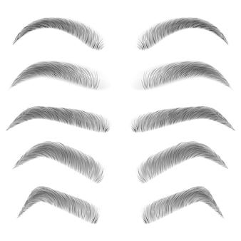 Différents types de sourcils.