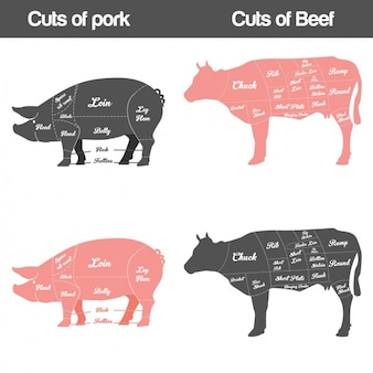 Différents types de viande