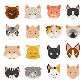 Différents visages chats