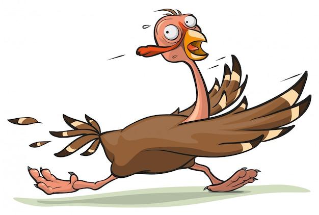 La dinde de thanksgiving s'exécute