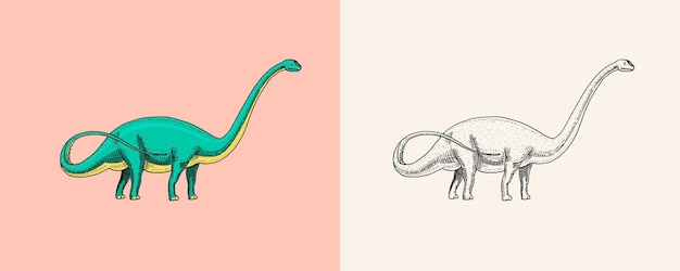 Dinosaure brachiosaurus ou sauropod plateosaurus diplodocus apatosaurus fossiles lézard ailé