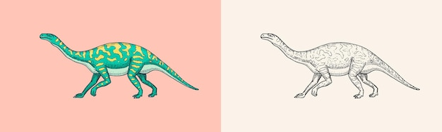Dinosaures barosaurus apatosaurus tenontosaurus plateosaurus large lézard massospondylus diplodocus