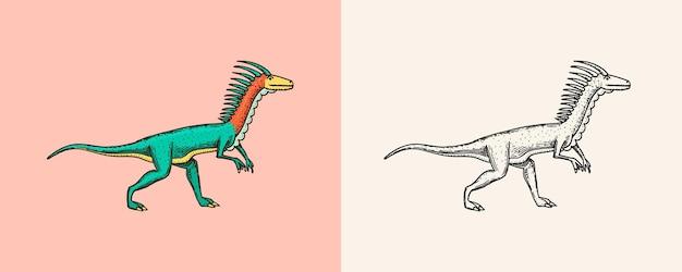 Dinosaures deinonychus squelettes fossiles reptiles préhistoriques gravés croquis dessinés à la main vintage pour